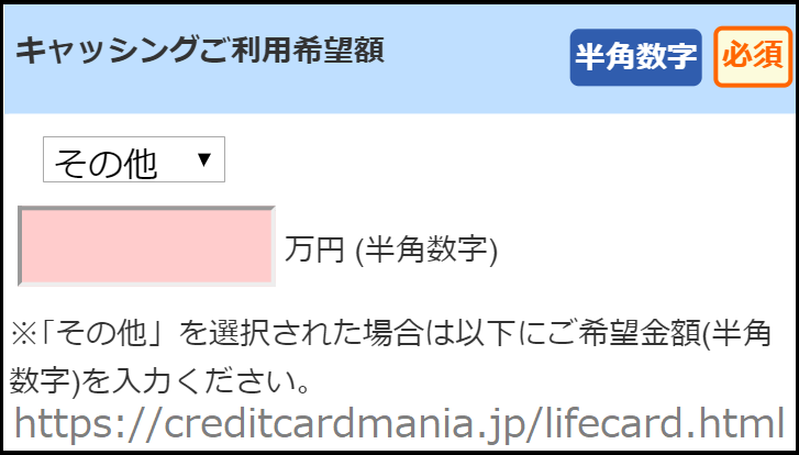 その他を選択するとキャッシング枠を0万円にすることができる!